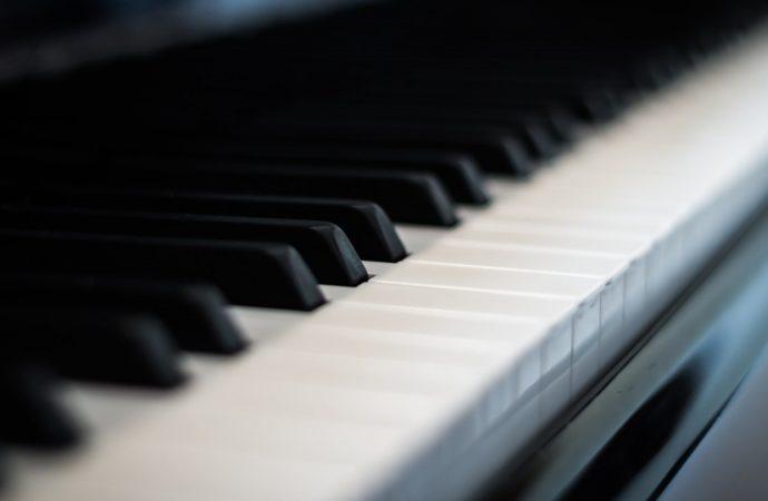 Comment le piano numérique s'est fait une place à part ?